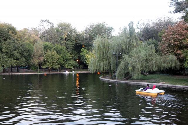 Parcul Cismigiu la 1 octombrie